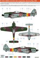 Asisbiz Focke Wulf Fw 190A9 6.JG301 (R22+ ) WNr 490044 Landensalza Germany May 1945 0B