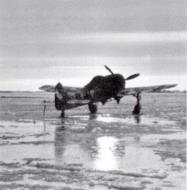 Asisbiz Focke Wulf Fw 190A4 1.JG54 White 3 Krasnogvardiesk Russia 1942 43 03