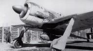Asisbiz Focke Wulf Fw 190A4 10.JG54 White III Russia 1943 01