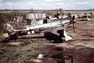 Asisbiz Focke Wulf Fw 190A5 5.JG54 (B5+ ) Stotz 1943 01