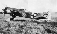 Asisbiz Focke Wulf Fw 190A6 5.JG54 (B2+ ) Radtke Immola 1944 01