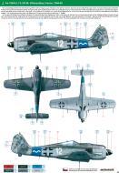 Asisbiz Focke Wulf Fw 190A8 13.JG54 (W12+~) Villacoublay France 1944 0A