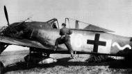 Asisbiz Focke Wulf Fw 190A8 13.JG54 (W16+~) France 1944 01