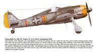 Asisbiz Focke Wulf Fw 190F8 II.SG2 Yellow 11 Red 7 WNr 681330 Nuebiberg 1945 0A