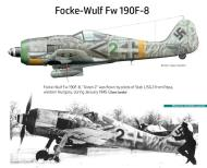 Asisbiz Focke Wulf Fw 190F8 Stab II.SG2 Green Winkel 2 Papa Hungary 1944 45 0A