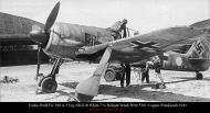 Asisbiz Focke Wulf Fw 190A5 Erg.SKG10 White 7+o Helmut Wenk WNr 5381 Cognac Frankreich 1943 01