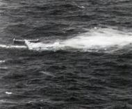 Asisbiz Focke Wulf Fw 200C Condor 7.KG40 combat kill a 295 Squadron Halifax 01