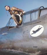 Asisbiz USAAF 39 189 Curtiss P 40CU Warhawk 8PG35PS New York 1940 41 01