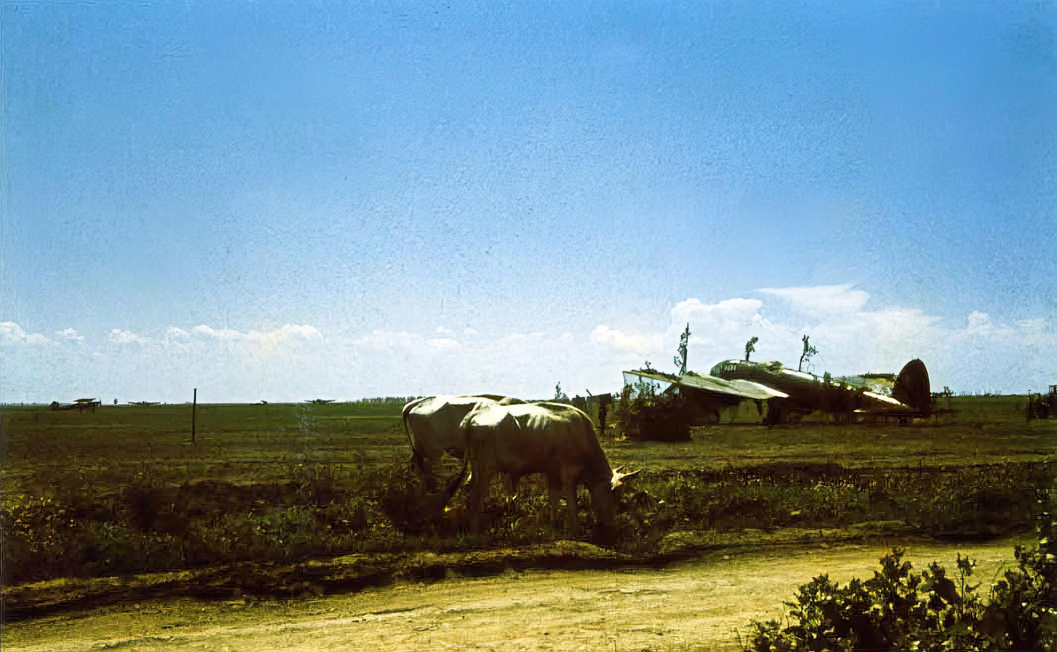Heinkel He 111H3 RRAF White 5 Bessarabia 1941 02