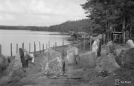 Asisbiz Hover MF 11 FAF Lentolaivue 15 NK173 at Hirviranta Finland 24th Aug 1941 01
