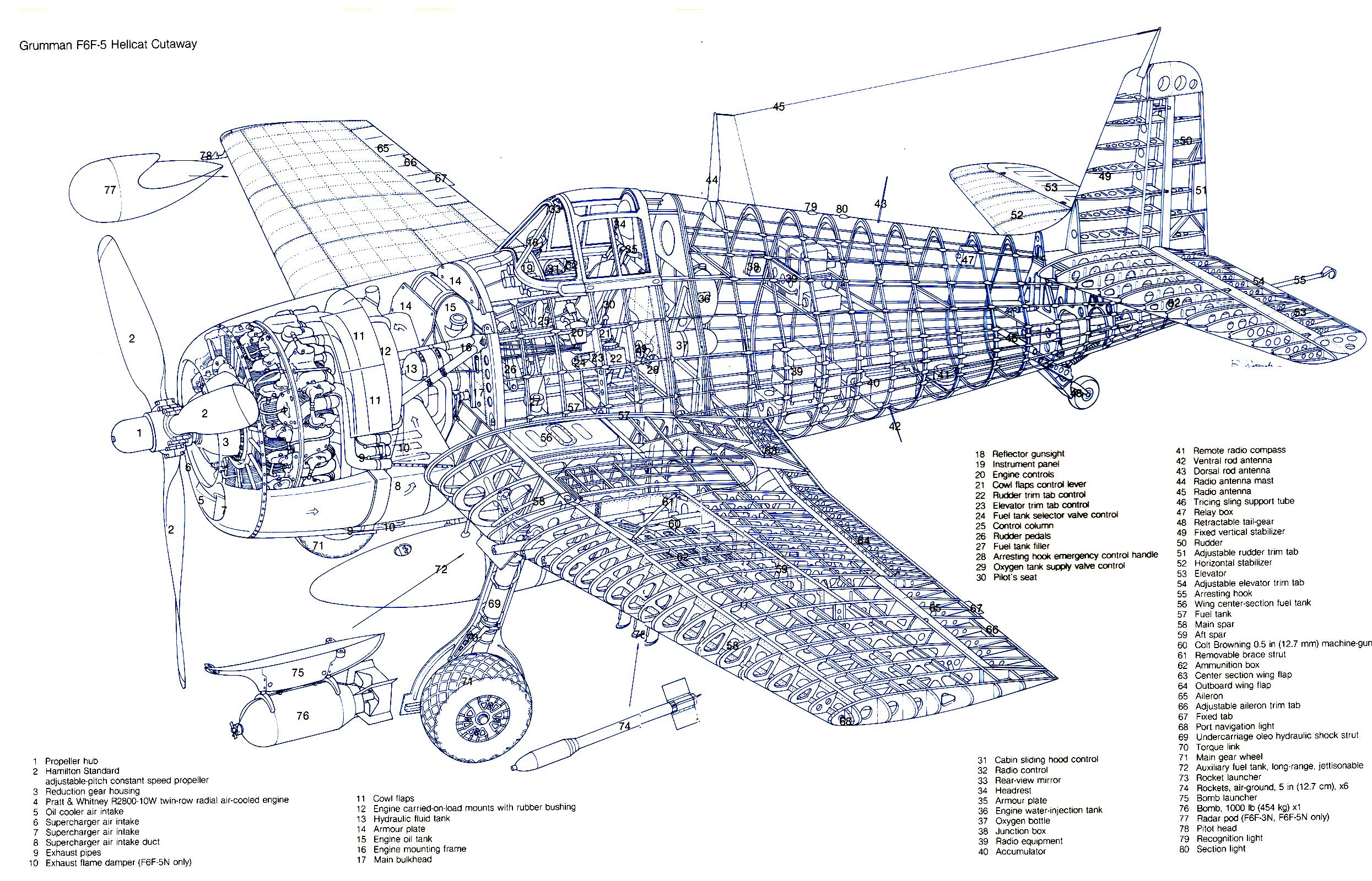Artwork showing internal structure of a typical Grumman F6F 5 Hellcat 0A