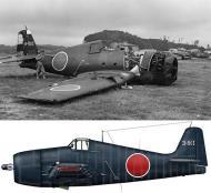 Asisbiz Captured F6F 5 Hellcat with IJAF White E 801 0A