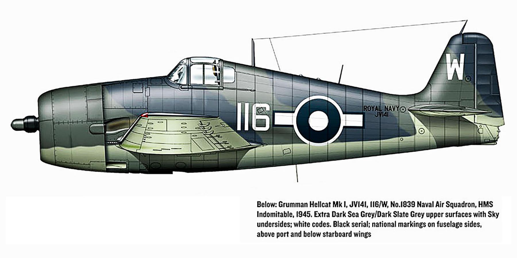 Grumman Hellcat MkI RN FAA 1839NAS W116 JV141 HMS Indomitable 1945 0A