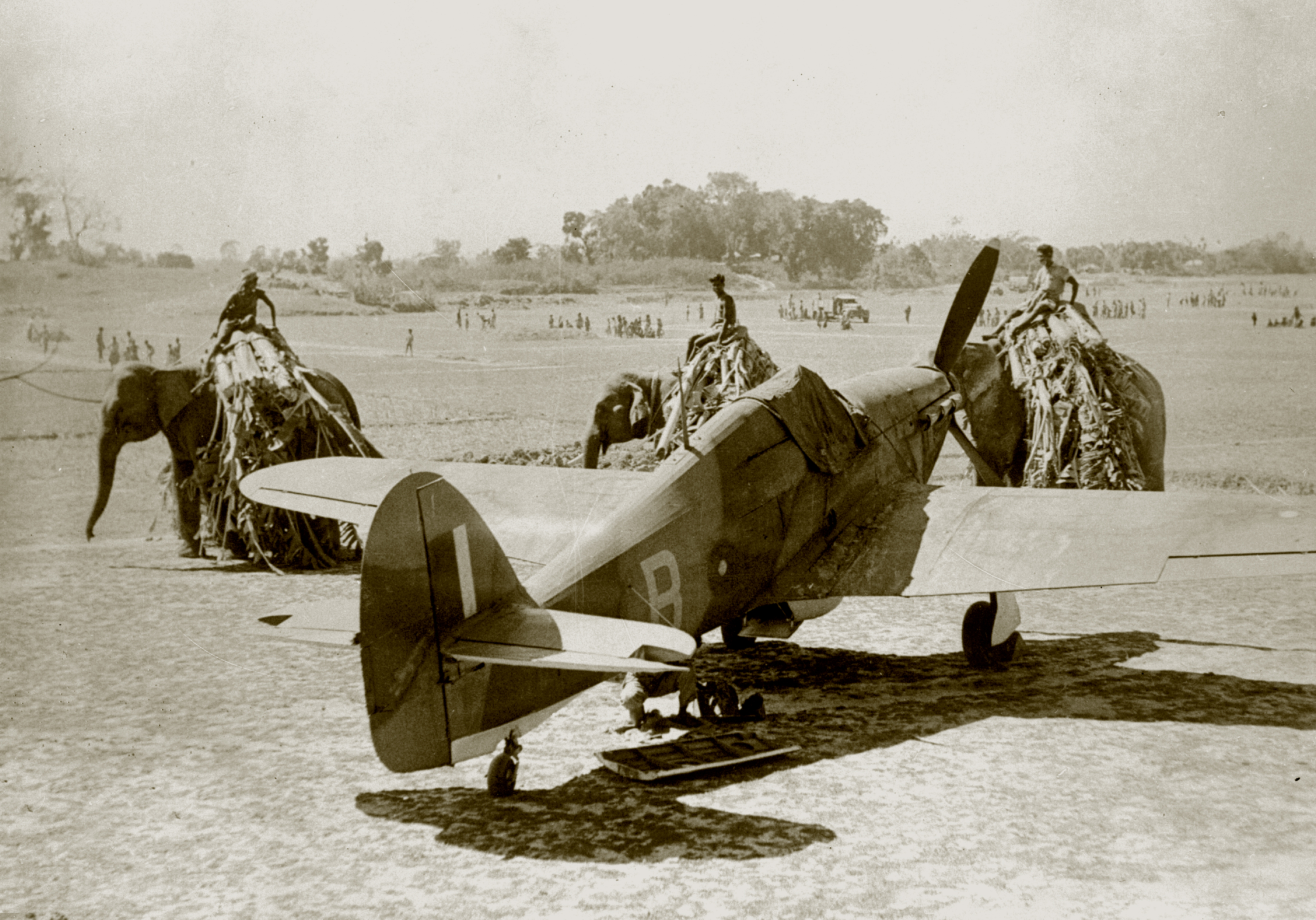 A group of elephants and their riders walking past a RAF Hurricane IIc B 01
