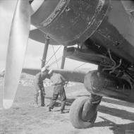 Asisbiz Fleet Air Arm Fairey Albacores used to bolster Maltas defenses 1942 IWM A16121