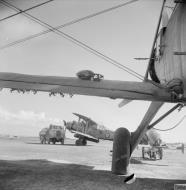 Asisbiz Fleet Air Arm Fairey Albacores used to bolster Maltas defenses 1942 IWM A16123