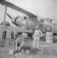 Asisbiz Fleet Air Arm Fairey Albacores used to bolster Maltas defenses 1942 IWM A16128