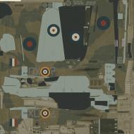 Asisbiz COD MS I RAF 245Sqn DX W2900 SLdr J Simpson Aldergrove Northern Ireland 1941
