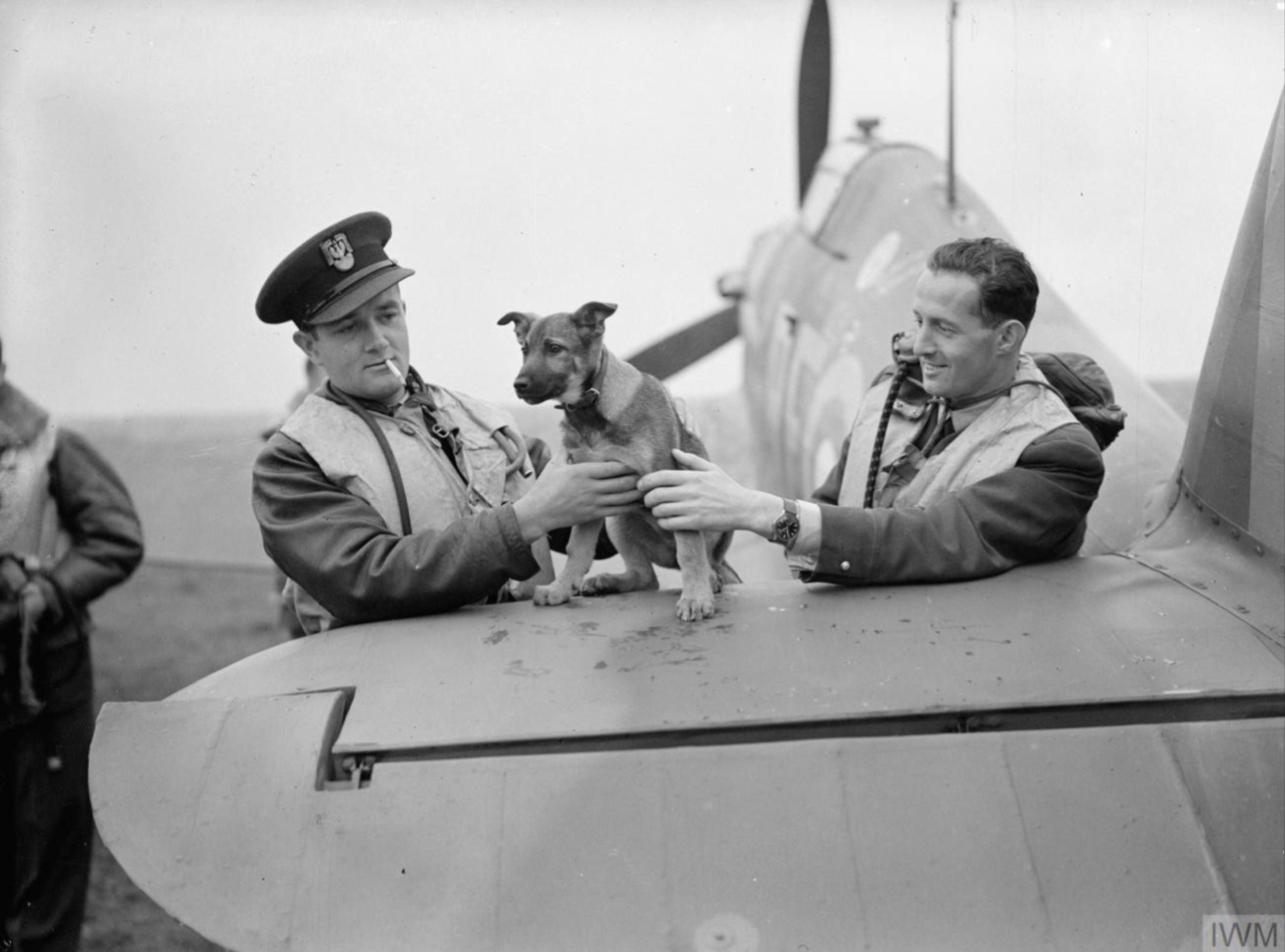 Aircrew RAF 303Sqn (Polish) pilots at RAF Leconfield Yorkshire 24th Oct 1940 IWM CH1537