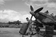 Asisbiz Hawker Hurricane IV Trop RAF 6Sqn at Araxos Greece IWM CNA4000