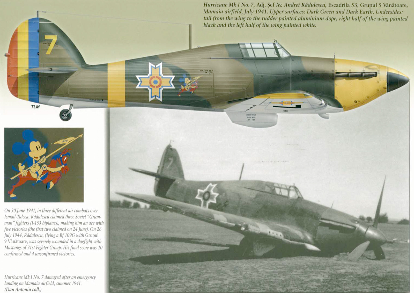 Hawker Hurricane Rumanian AF Esc 5.53 Yellow 7 Horia Agarici Rumania 1941 Mushroom 9111 0A