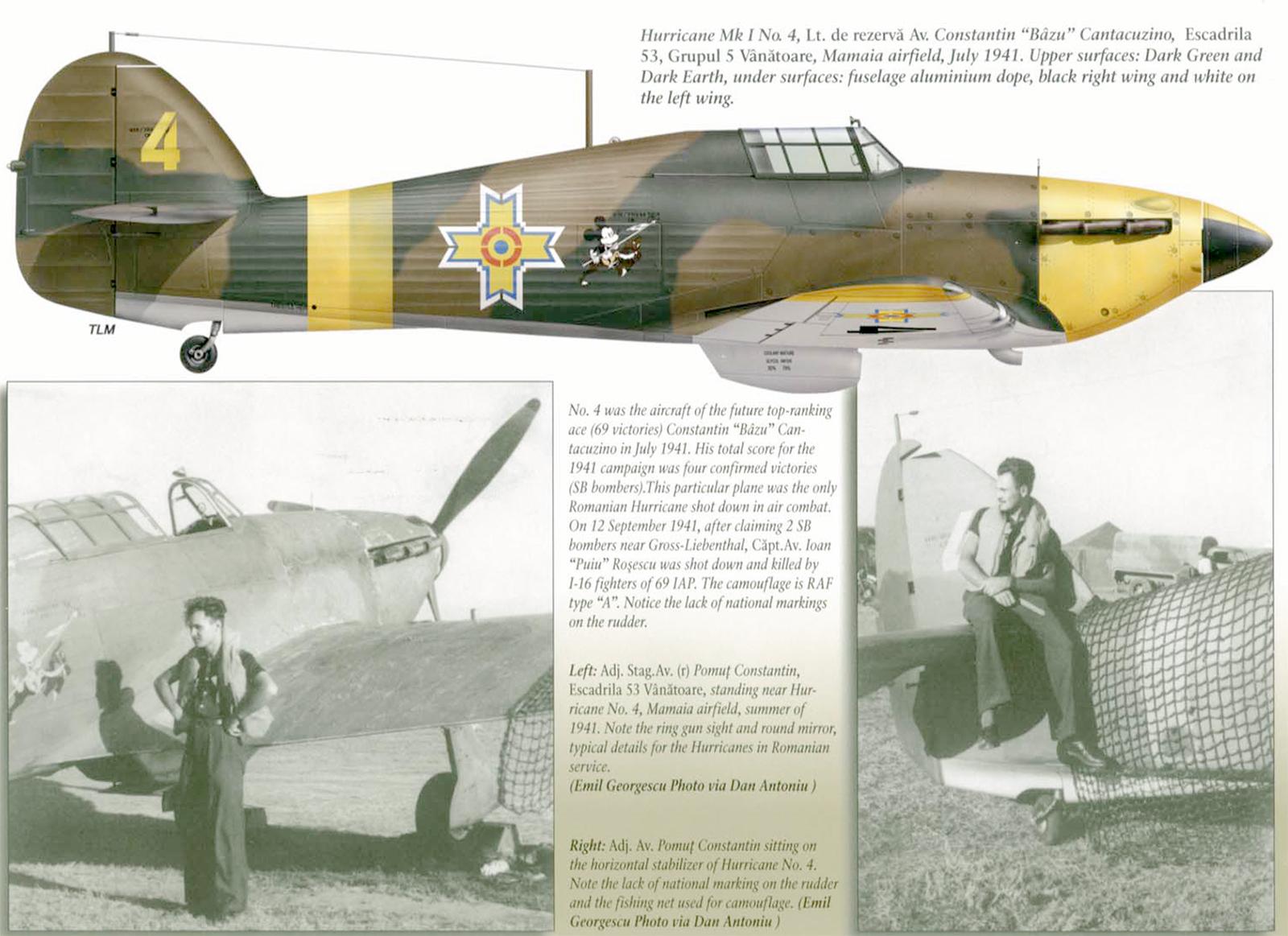 Hawker Hurricane Rumanian AF Esc 53 Yellow 4 Horia Agarici Rumania 1941 Mushroom 9111 0A