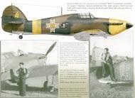 Asisbiz Hawker Hurricane Rumanian AF Esc 53 Yellow 4 Horia Agarici Rumania 1941 Mushroom 9111 0A