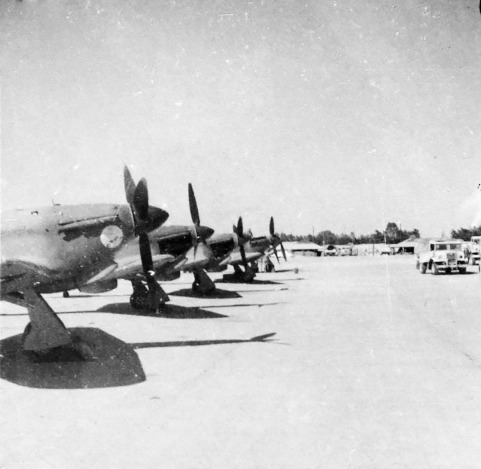 Hawker Hurricane IIb SAAF 40Sqn HL7xx with Gremlin El Fredan Egypt 1942 43 01