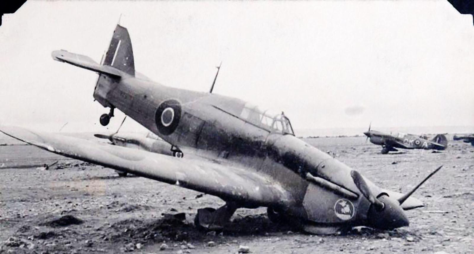 Hawker Hurricane IIb SAAF 40Sqn x23xx with Gremlin Cockpit Clearence North Africa 1942 43 02