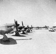 Asisbiz Hawker Hurricane IIb SAAF 40Sqn HL7xx with Gremlin El Fredan Egypt 1942 43 01