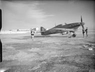 Asisbiz Fleet Air Arm Sea Hurricane BC765 at Malta IWM A13426