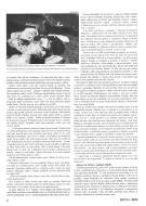 Asisbiz Magyar Kiralyi Honved Legiero RHAF Junkers Ju 52's article by Revi 28 P06