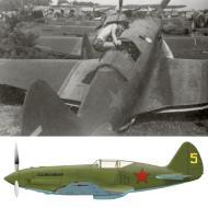 Asisbiz Mikoyan Gurevich MiG 1 31IAP Yellow 5 Kaunas airfield in Lithuania first days of war 1941 0A