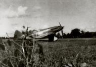 Asisbiz Mikoyan Gurevich MiG 3 12OIAE White 42 Leningrad Front 1942 01