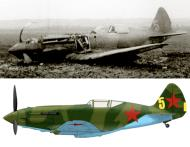 Asisbiz Mikoyan Gurevich MiG 3 unknown unit Yellow 5 force landed Barbarossa 1941 01