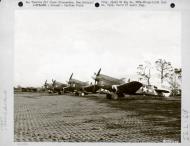 Asisbiz USAAF 42 105268 Curtiss P 40N Warhawk 8FG35FS Yellow L line up Cape Gloucester New Britain Apr 1944 01