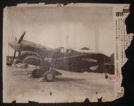 Asisbiz Curtiss P 40 captured by the Japanese in the Philippines 01