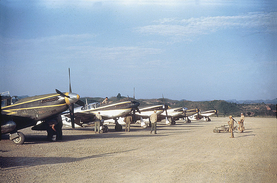 1 P 51 Mustangs 118th Tactical Recon Squadron 01