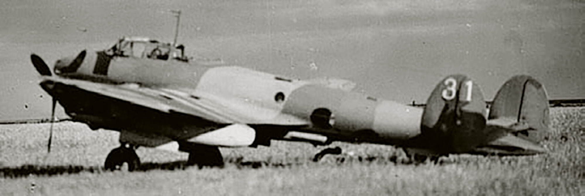 Petlyakov Pe 2 317ORAP White 31 based in the Odessa region summer 1941 01
