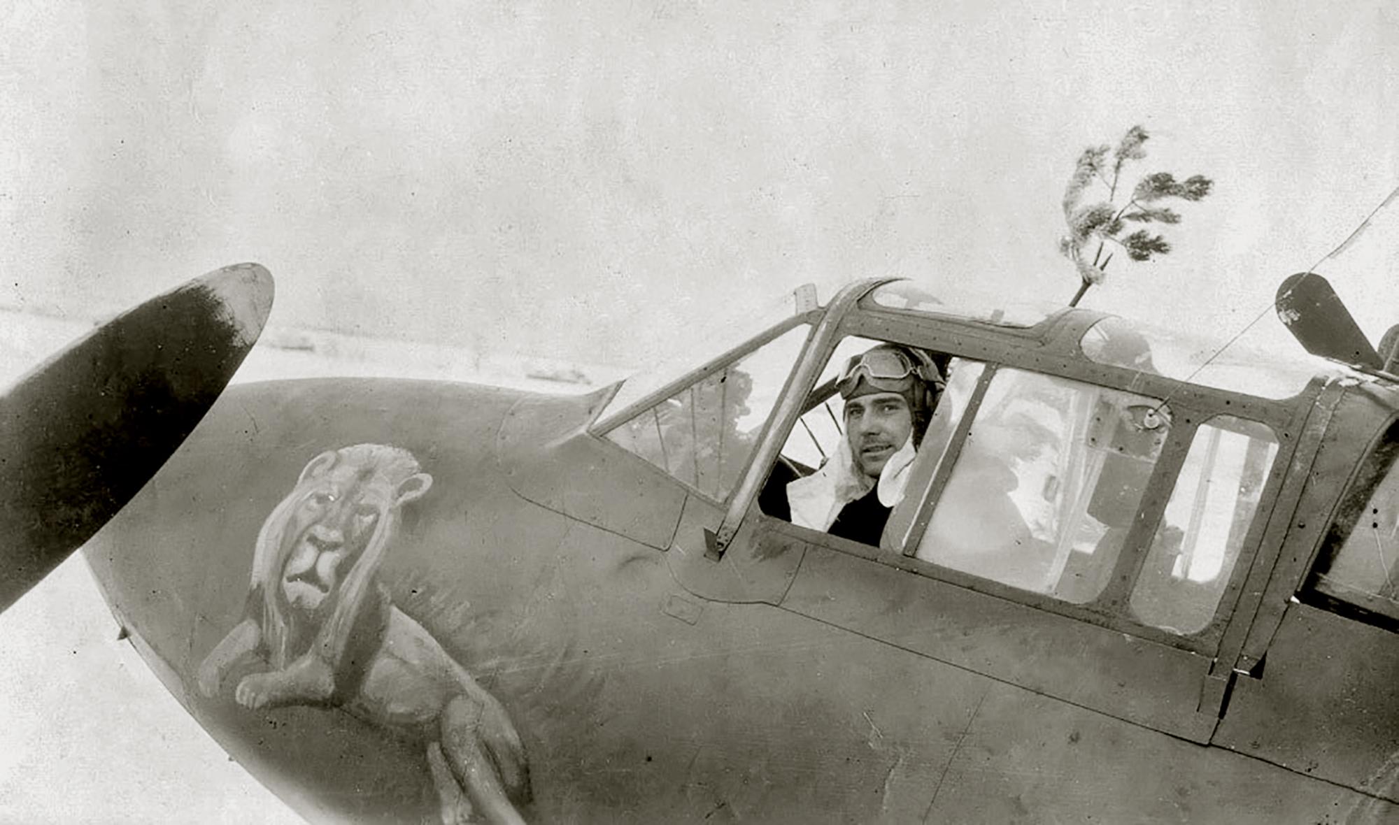 Petlyakov Pe 2 36GvBAP with pilot Timofey P Punev and the Lion emblem Ukraine 1943 01