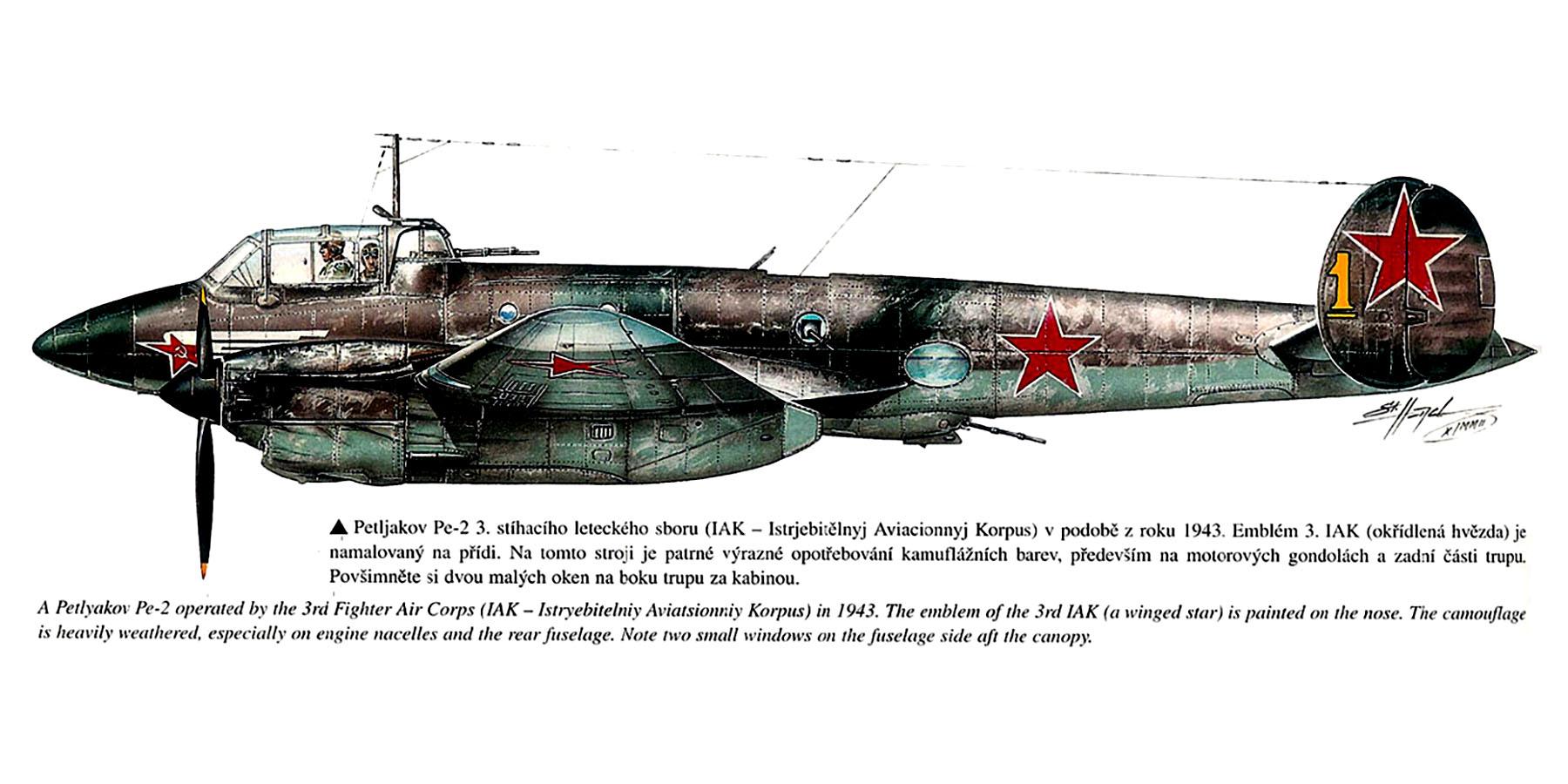 Petlyakov Pe 2 3IAK Yellow 1 1943 0A