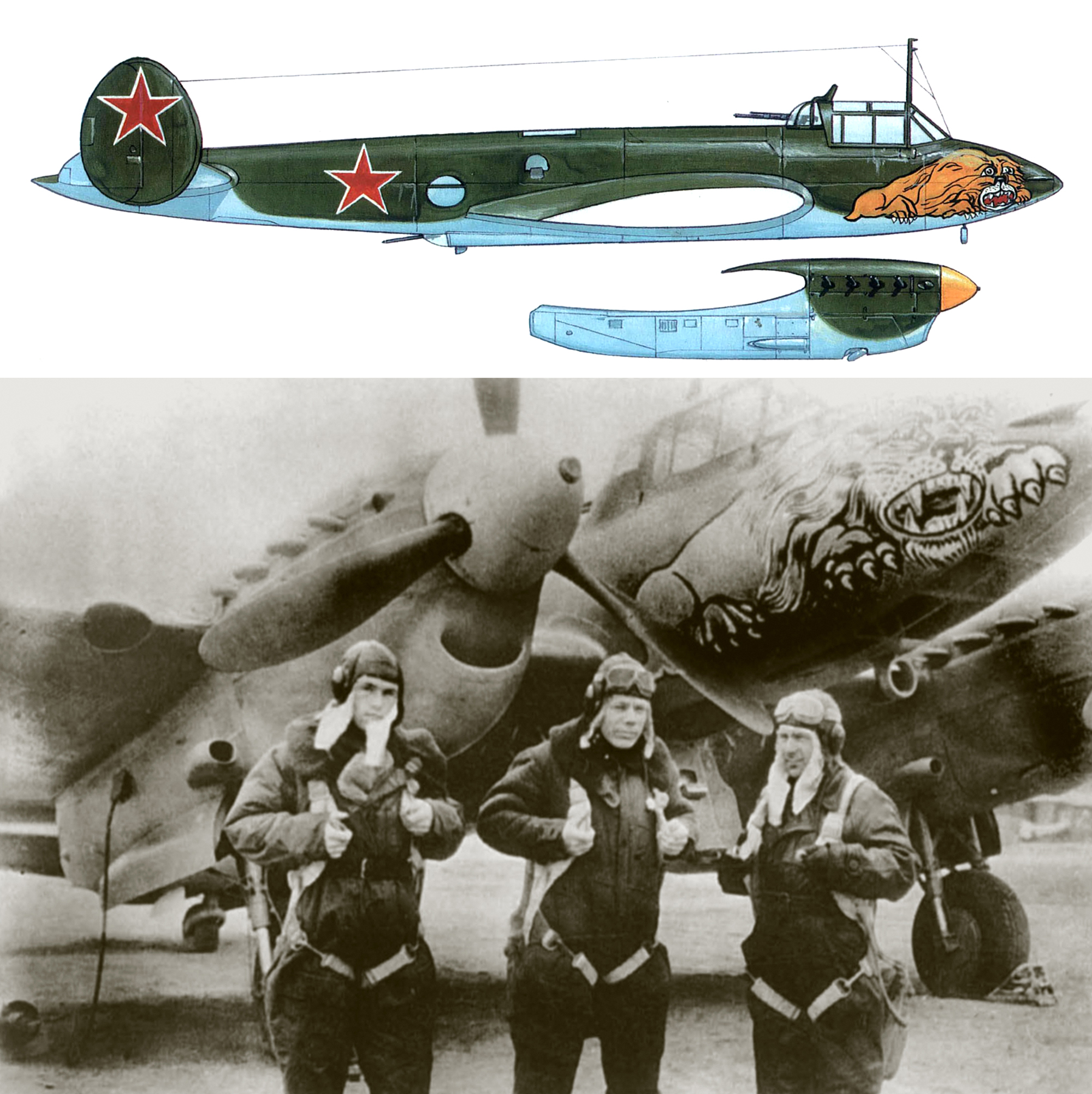 Petlyakov Pe 2R type 359 99GvDRAP Long Range Recon Unit with snarling Lion East Prussia 1944 0A