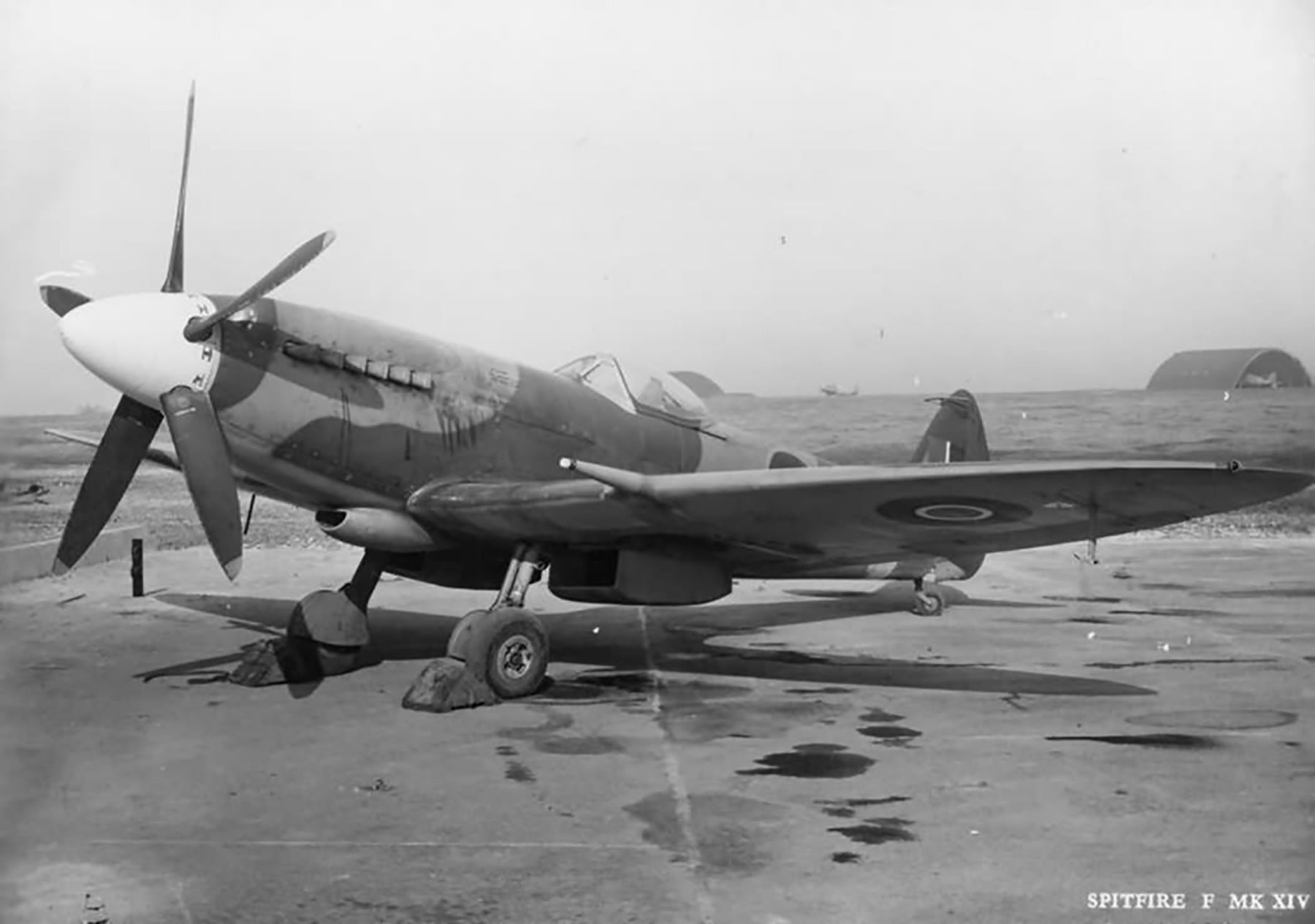 Spitfire FXIVe RAF RM784 March 1945 web 01