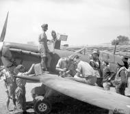 Asisbiz Spitfire MkV RAF ground crew preparing for its next sorte Malta 17th Jun 1942 web 01
