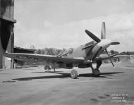 Asisbiz Spitfire 24 Prototype PK713 England Oct 1946 IWM MH5286