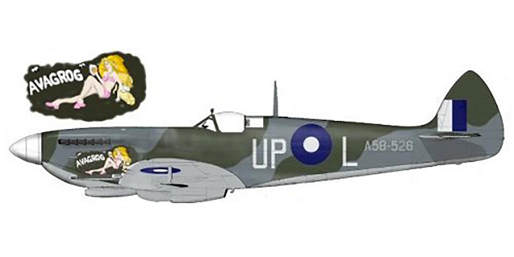 Spitfire LFVIII RAAF 79Sqn UPL A58 526 Morotai 1945 0A