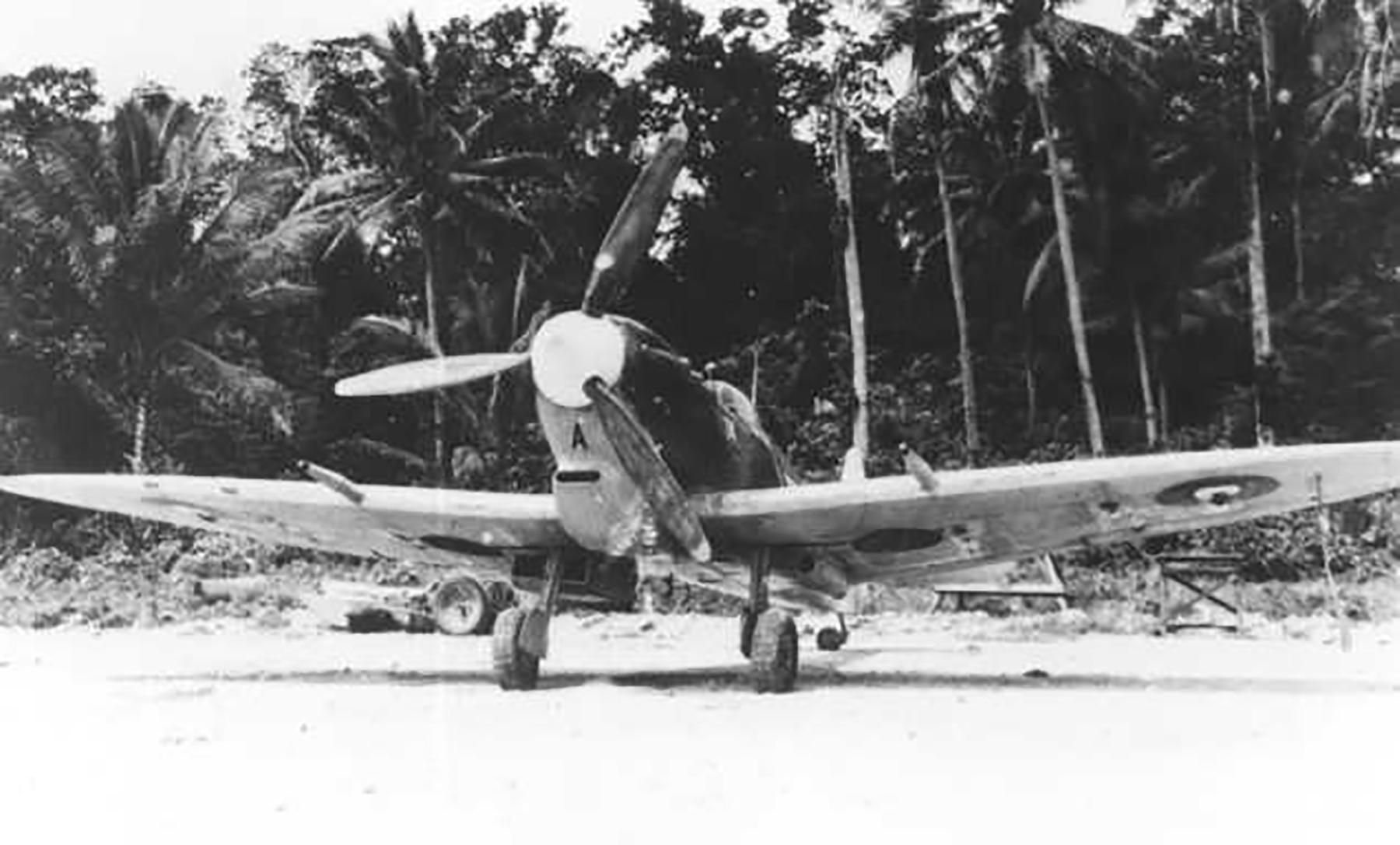 Spitfire MkVcTrop RAAF 79Sqn UPA Reid A58 252 Morotai 1945 03