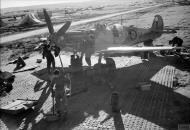 Asisbiz Spitfire LFVIII RAF 145Sqn ZXF JF503 dispersal area at Canne Italy IWM CNA2407