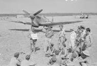 Asisbiz Spitfire MkVc RAF 152Sqn at Lentini East Sicily 1943 IWM CNA1235