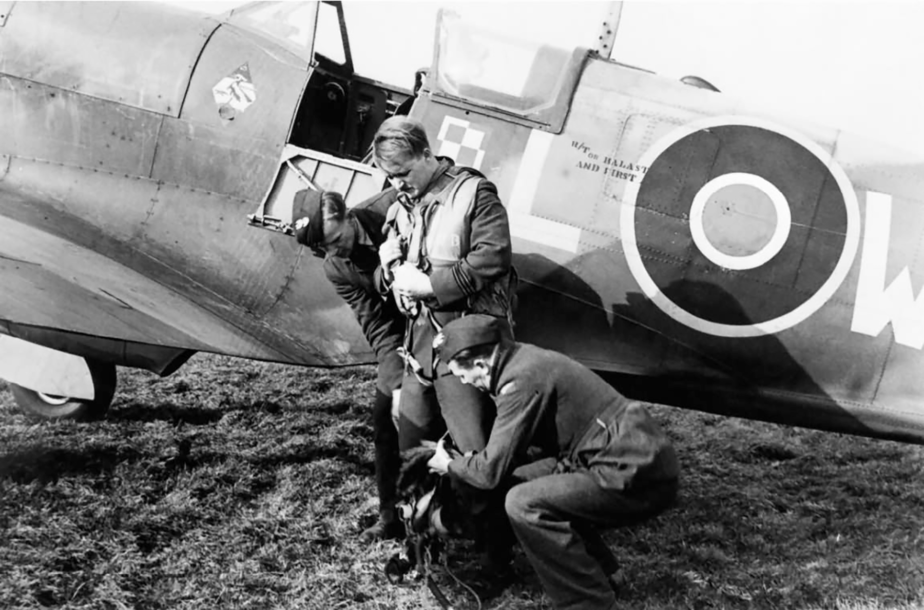 Spitfire MkVb RAF 302Sqn WXL Sqn Ldr Lapka EN865 Hutton Cranswick Mar 1943 web 01